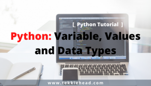 Python_Variable, Values and Data Types