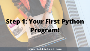 Step 1 Your First Python Program!